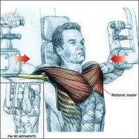 ejercicio de pecho que se llamapekdek