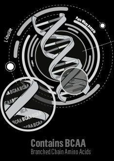 proteínas de suero con aminoácidos