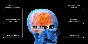 melatonina en suplementos