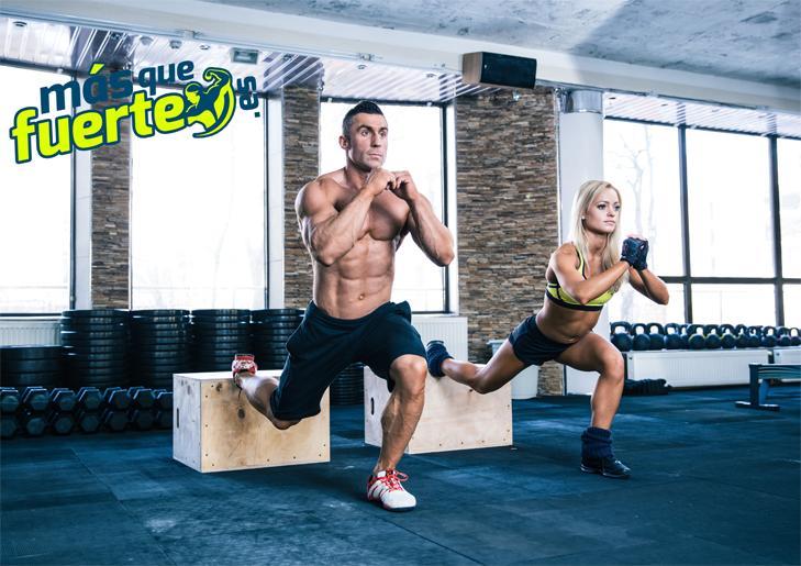 definir los músculos son una de las propiedades de la carnitina